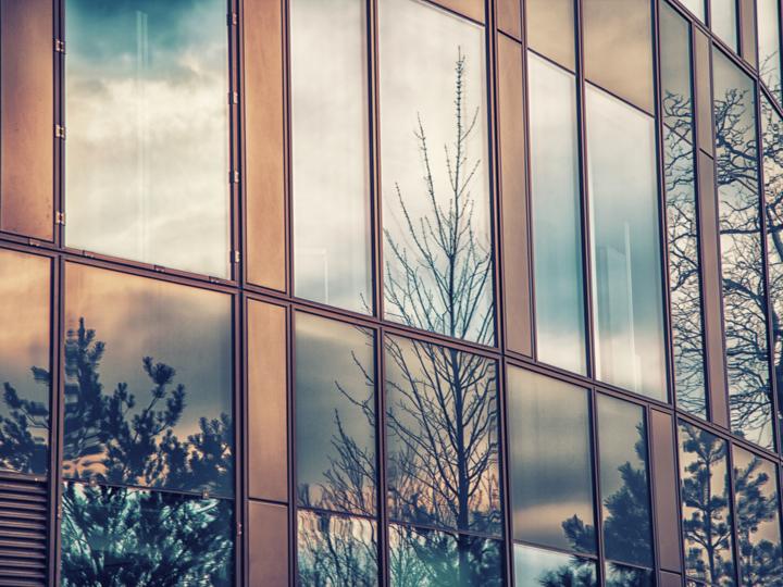 Window Film vs Window Tinting