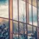 window film vs window tint